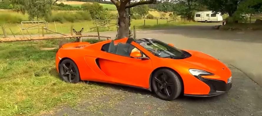 Γάιδαρος επιτέθηκε σε μια McLaren 650S Spider