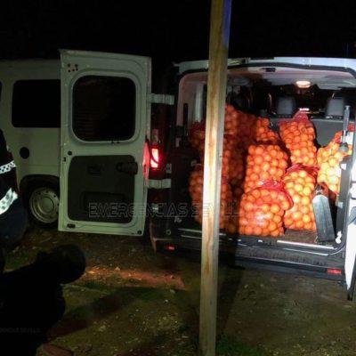 Seville-Police-Stolen-Oranges-2