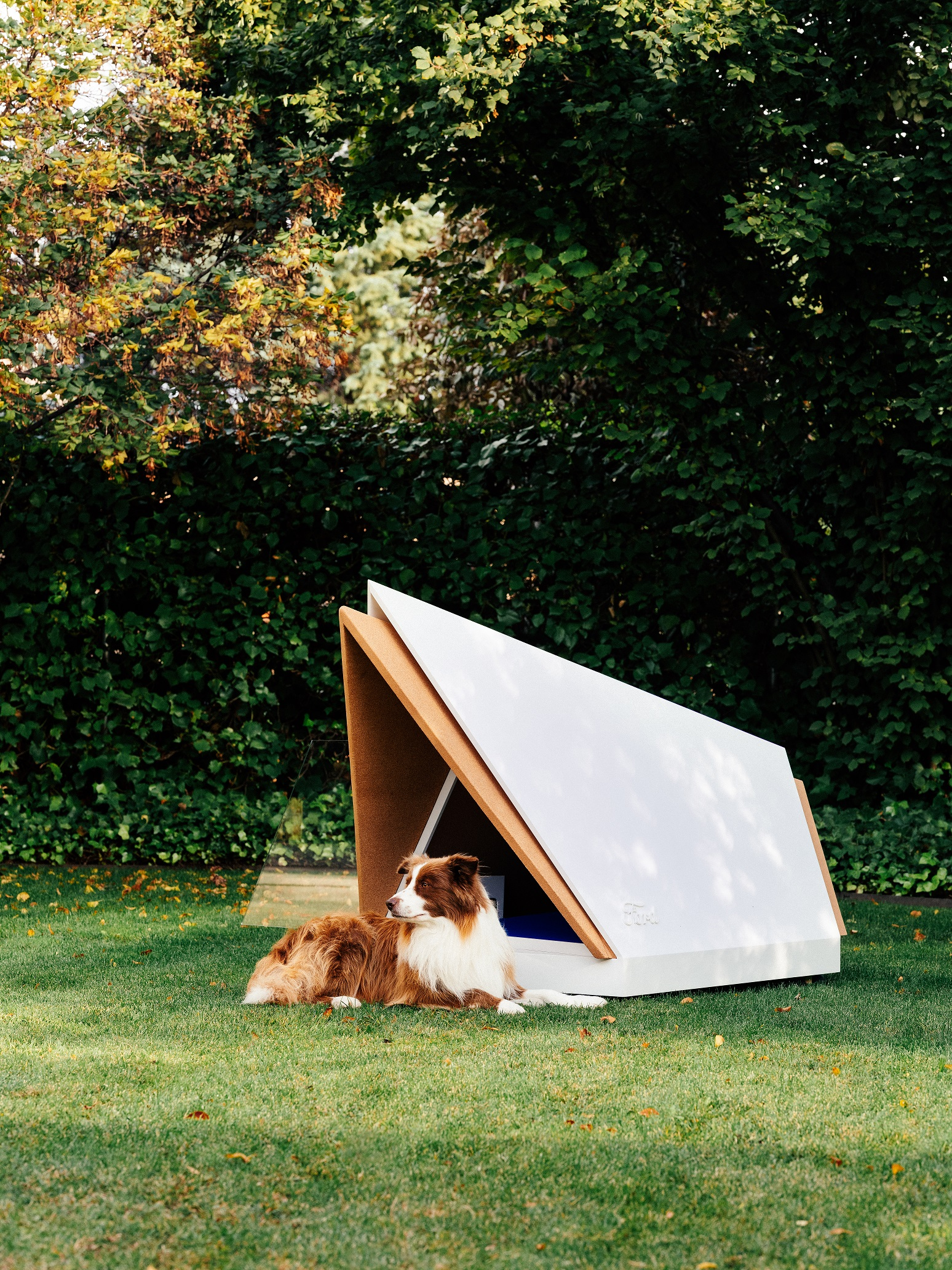 29ce0daa491e Noise-Cancelling Kennel Could Help Make Sure Your Dog Has a Happ