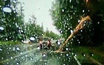 Κεραυνός κατέστρεψε ταυτόχρονα δέντρο και αυτοκίνητο (video)