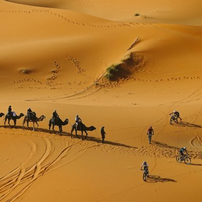 race-titan-cycling-camels-sand