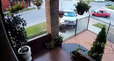 Αστυνομικός παραβίασε stop και συνέλαβε αυτόν που τράκαρε (video)