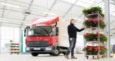 Ένα φορτηγό Mercedes Atego γεμάτο αλεξανδρινά φυτά